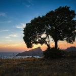 Séminaire à Cargèse, Corse