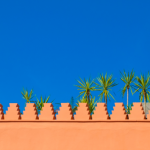 Séminaire 2010 à Marrakech